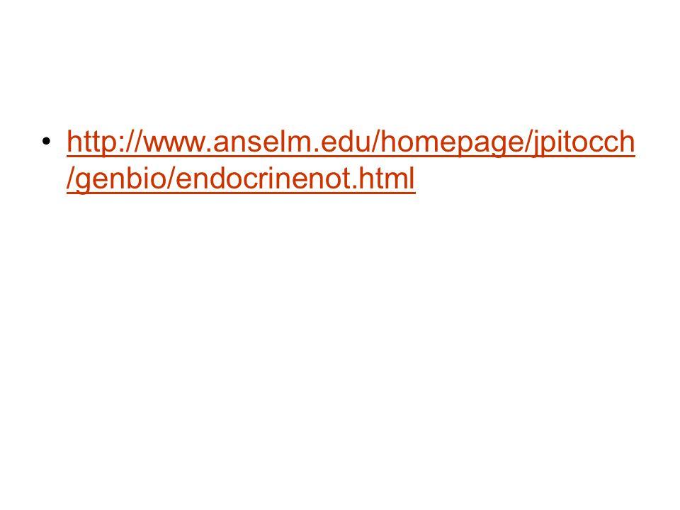 http://www.anselm.edu/homepage/jpitocch /genbio/endocrinenot.htmlhttp://www.anselm.edu/homepage/jpitocch /genbio/endocrinenot.html