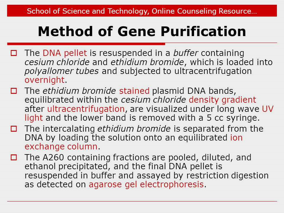 School of Science and Technology, Online Counseling Resource… Method of Gene Purification  The DNA pellet is resuspended in a buffer containing cesium chloride and ethidium bromide, which is loaded into polyallomer tubes and subjected to ultracentrifugation overnight.