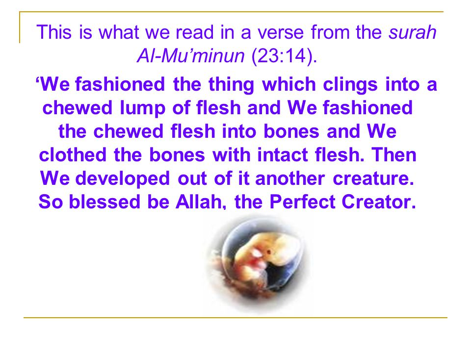 This is what we read in a verse from the surah Al-Mu'minun (23:14).