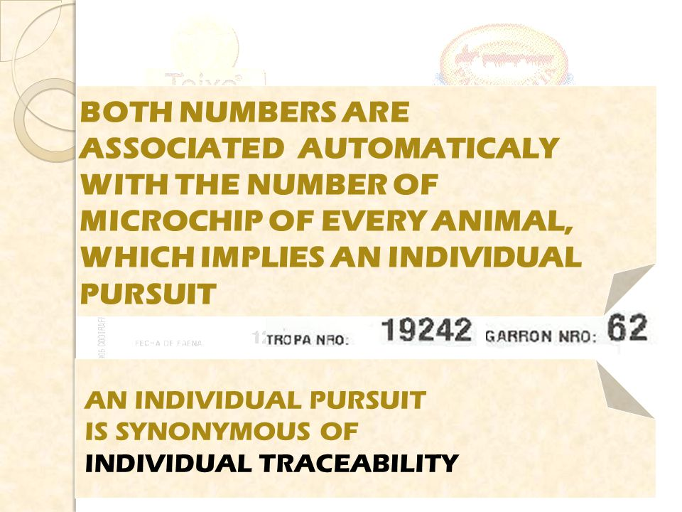 BOTH NUMBERS ARE ASSOCIATED AUTOMATICALY WITH THE NUMBER OF MICROCHIP OF EVERY ANIMAL, WHICH IMPLIES AN INDIVIDUAL PURSUIT AN INDIVIDUAL PURSUIT IS SYNONYMOUS OF INDIVIDUAL TRACEABILITY