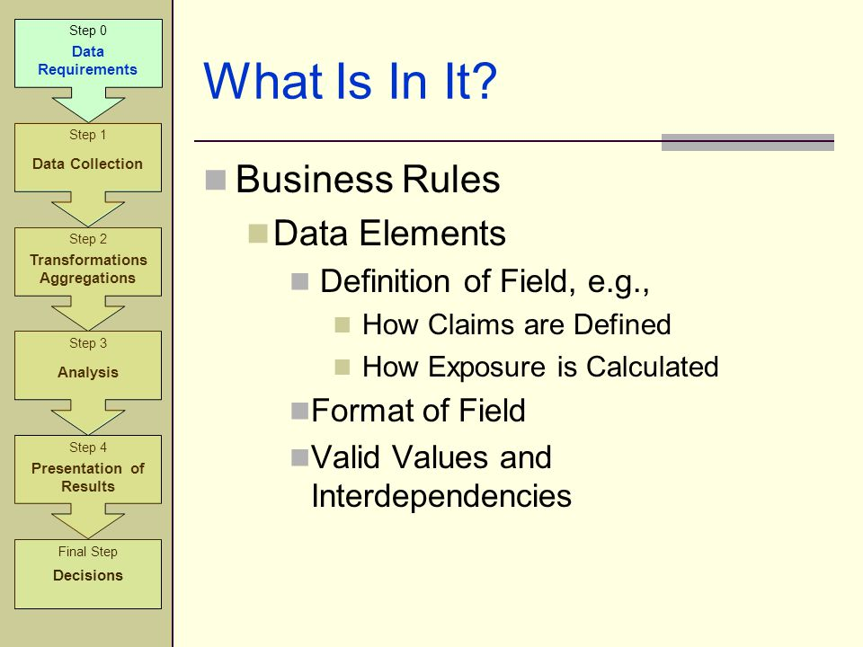 What Is In It? Business Rules Data Elements Definition of Field, e.g., How Claims are Defined How Exposure is Calculated Format of Field Valid Values