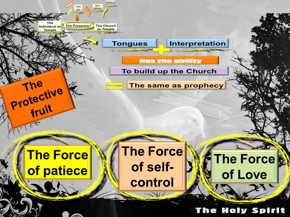 The Protective fruit The Force of patiece The Force of self- control The Force of Love