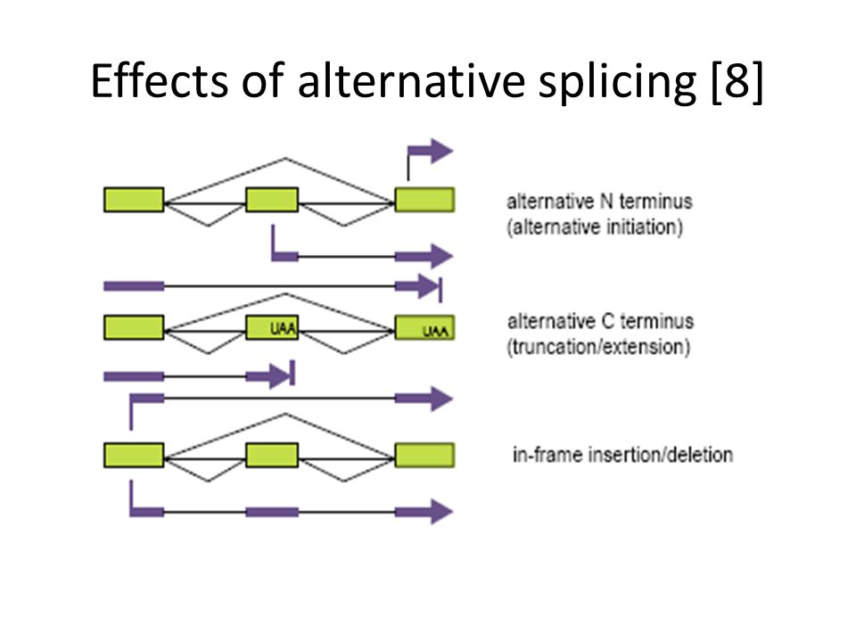 Effects of alternative splicing [8]