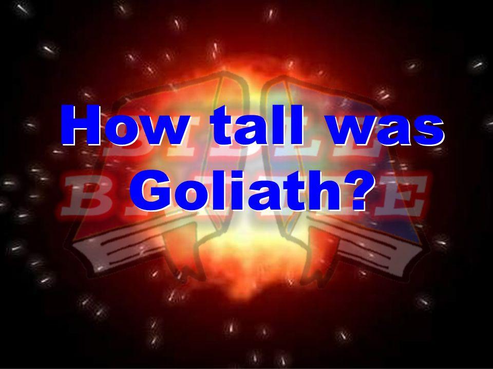 How tall was Goliath How tall was Goliath