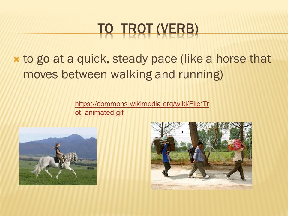  to go at a quick, steady pace (like a horse that moves between walking and running) https://commons.wikimedia.org/wiki/File:Tr ot_animated.gif