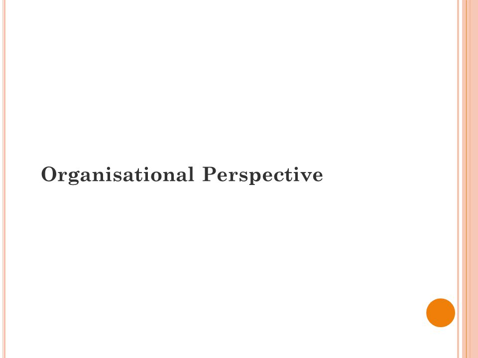 Organisational Perspective