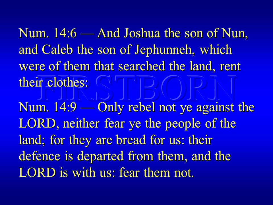 Num. 14:6 — And Joshua the son of Nun, and Caleb the son of Jephunneh, which were of them that searched the land, rent their clothes: Num. 14:9 — Only