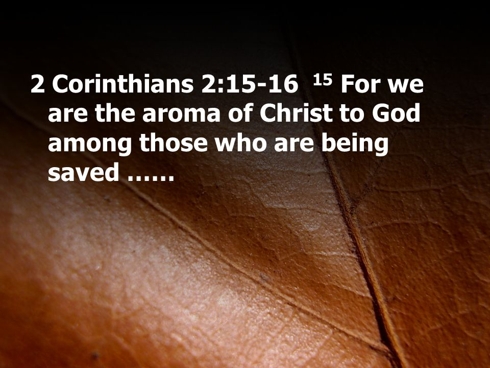 2 Corinthians 2:15-16 15 For we are the aroma of Christ to God among those who are being saved ……