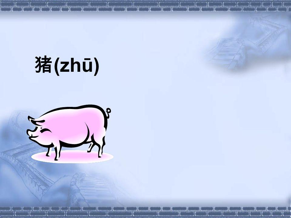 猪 (zhū)