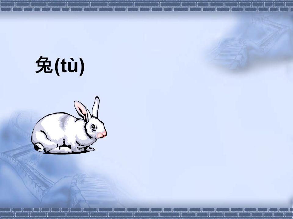 兔 (tù)