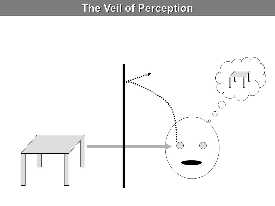 The Veil of Perception