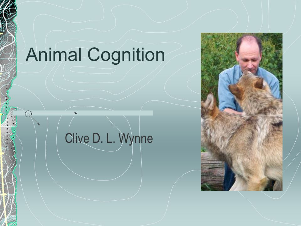 Animal Cognition Clive D. L. Wynne