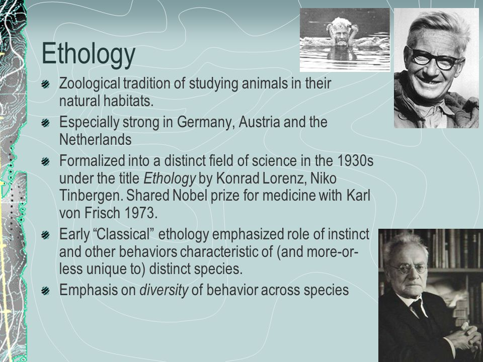 Cognitive Psychology In the 1960s, psychologists grew tired of the 'strictures' of behaviorism.