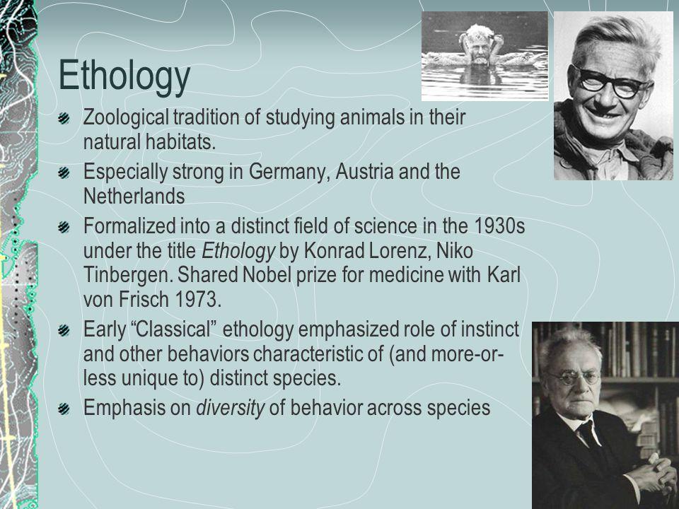 Brain size: relative Simple mammals K ~ 0.1 Other mammals K ~ 0.2 Primates/whales K ~ 0.3 Dolphins K ~ 0.64 Human K ~ 0.89