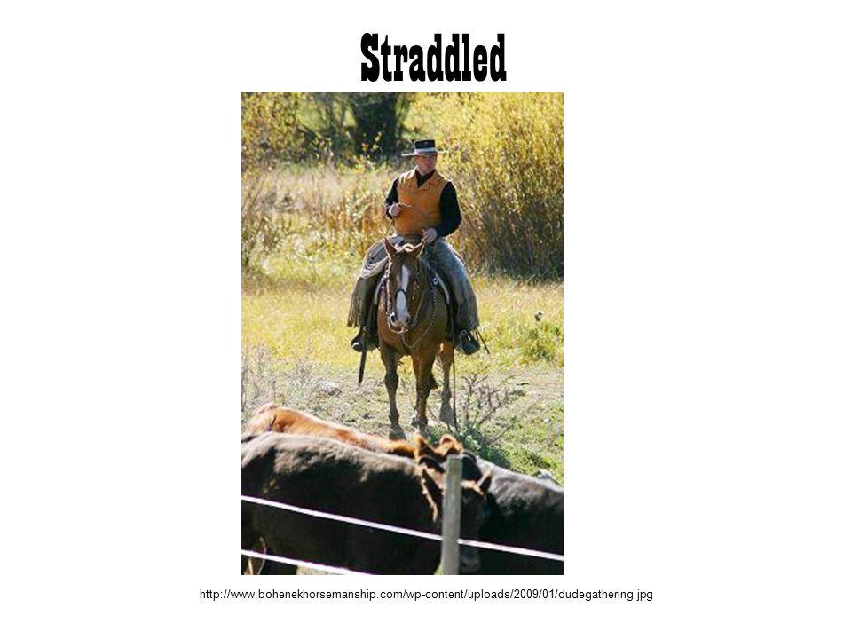 Straddled http://www.bohenekhorsemanship.com/wp-content/uploads/2009/01/dudegathering.jpg