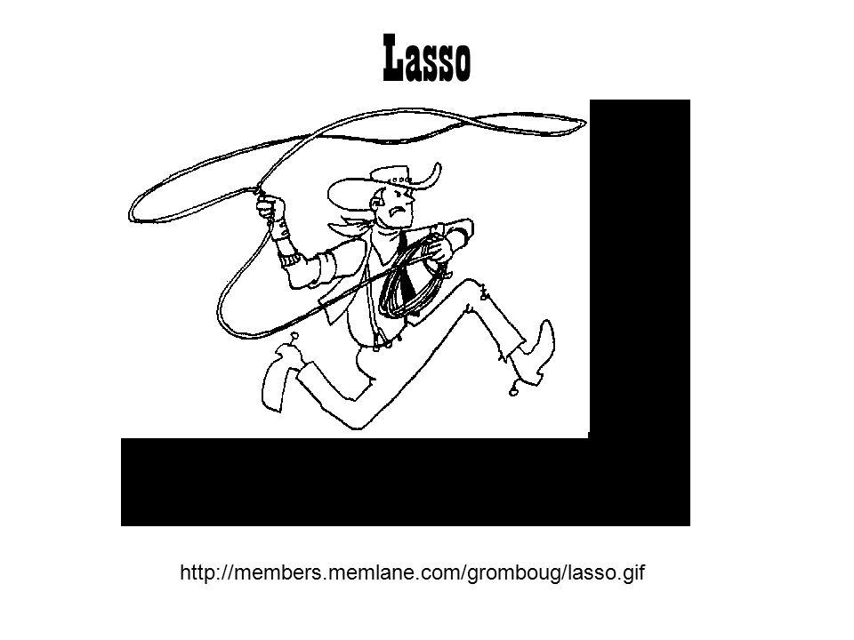 Lasso http://members.memlane.com/gromboug/lasso.gif