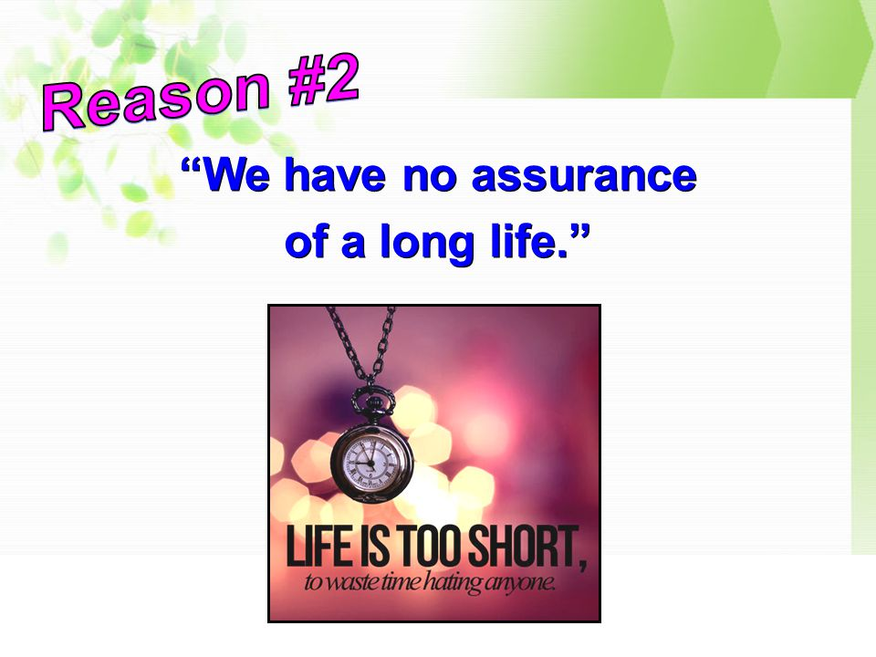 We have no assurance of a long life. We have no assurance of a long life.
