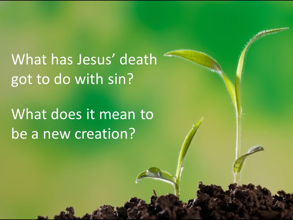 What has Jesus' death got to do with sin? What does it mean to be a new creation?