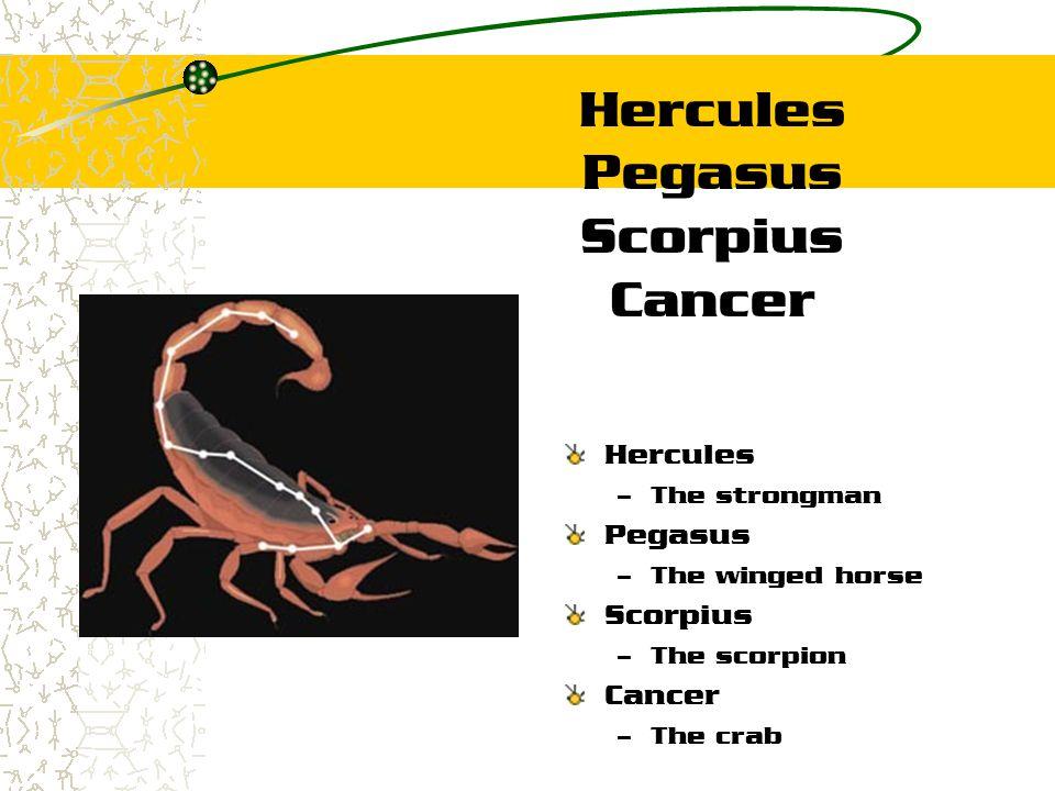 Hercules Pegasus Scorpius Cancer Hercules – The strongman Pegasus – The winged horse Scorpius – The scorpion Cancer – The crab