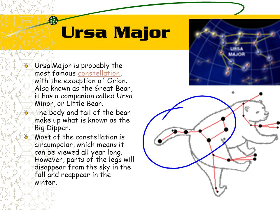 Ursa Major Ursa Major is probably the most famous constellation, with the exception of Orion. Also known as the Great Bear, it has a companion called