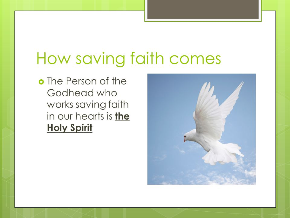 How saving faith comes the Holy Spirit  The Person of the Godhead who works saving faith in our hearts is the Holy Spirit