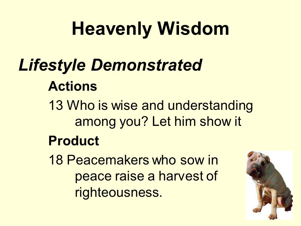Heavenly Wisdom Lifestyle Demonstrated Actions 13 Who is wise and understanding among you.