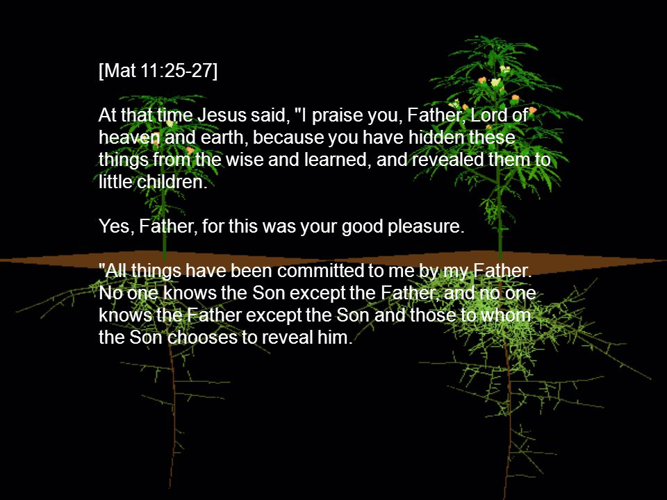 [Mat 11:25-27] At that time Jesus said, I praise you, Father, Lord of heaven and earth, because you have hidden these things from the wise and learned, and revealed them to little children.