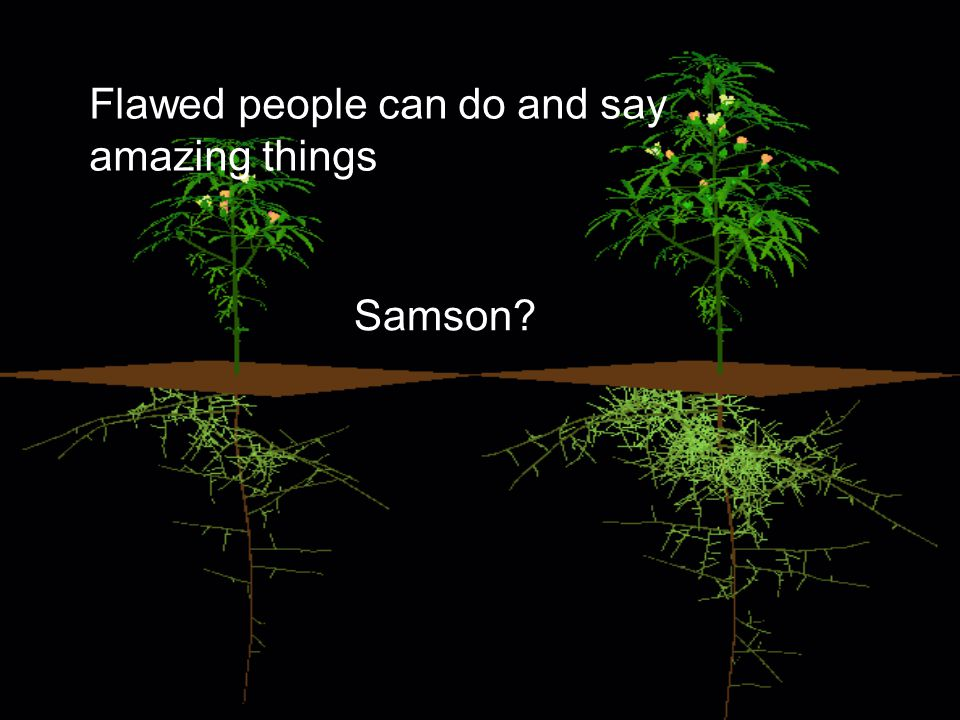 Flawed people can do and say amazing things Samson