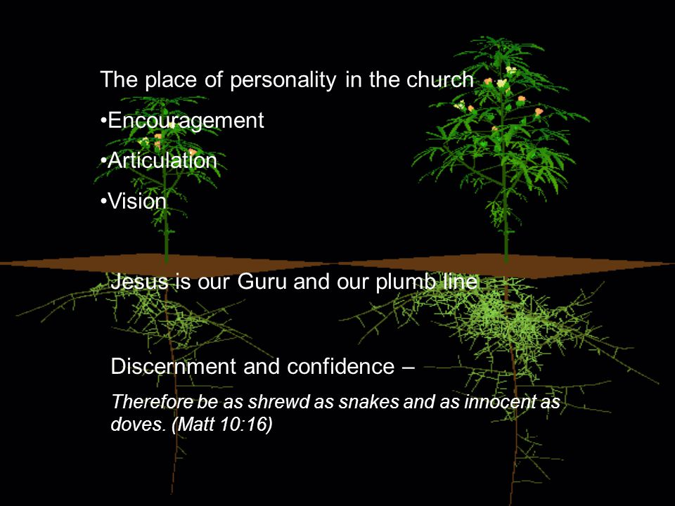 The place of personality in the church Encouragement Articulation Vision Jesus is our Guru and our plumb line Discernment and confidence – Therefore be as shrewd as snakes and as innocent as doves.
