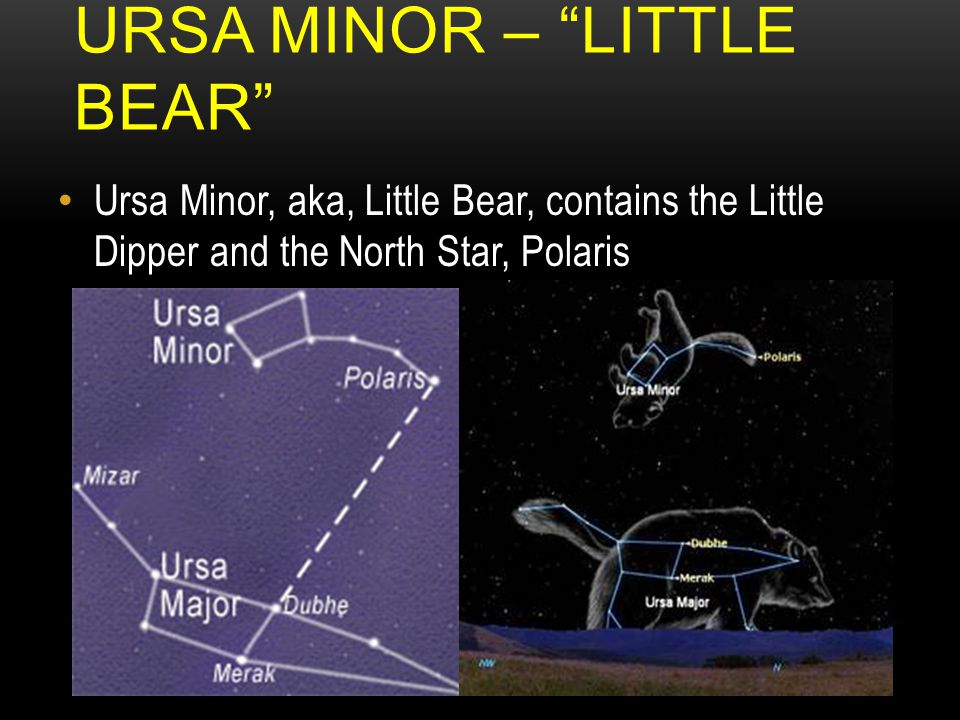 URSA MINOR – LITTLE BEAR Ursa Minor, aka, Little Bear, contains the Little Dipper and the North Star, Polaris