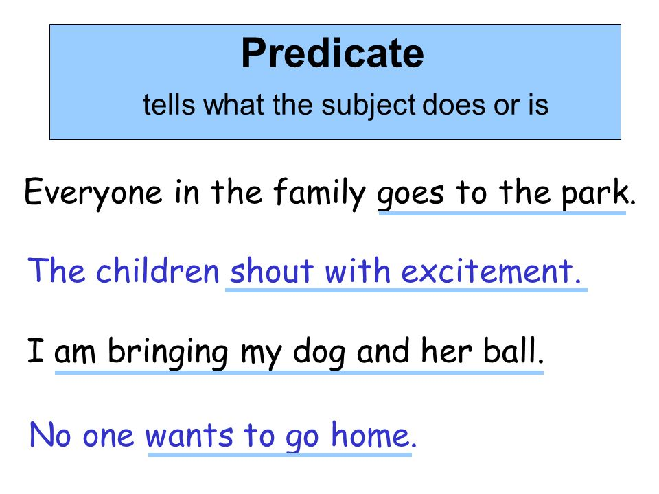 Predicate tells what the subject does or is Everyone in the family goes to the park. The children shout with excitement. I am bringing my dog and her
