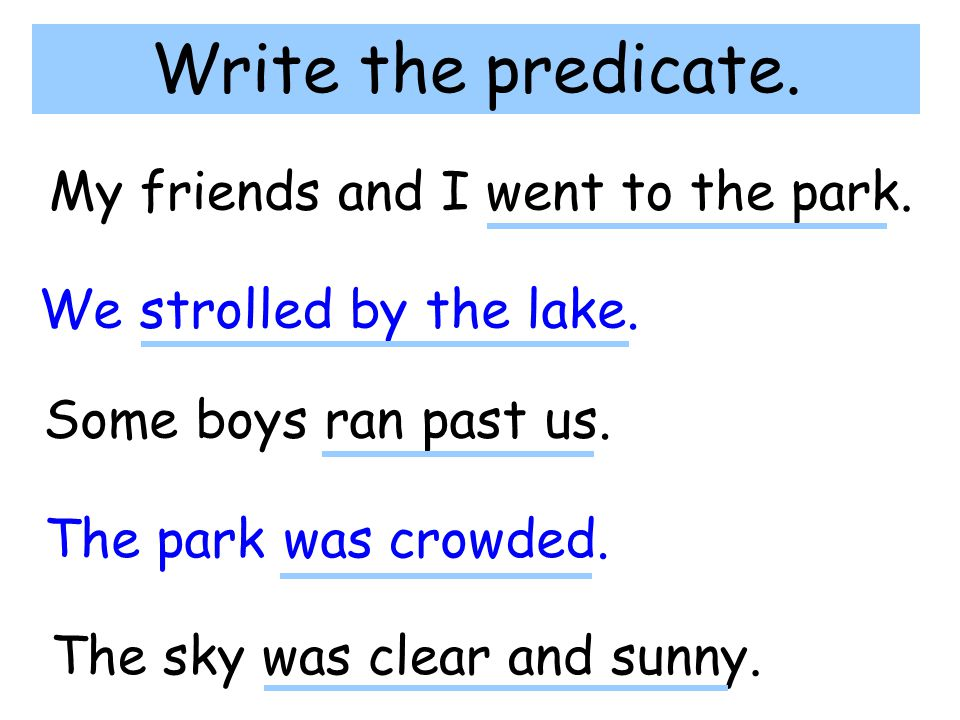 Write the predicate. My friends and I went to the park. We strolled by the lake. Some boys ran past us. The park was crowded. The sky was clear and su