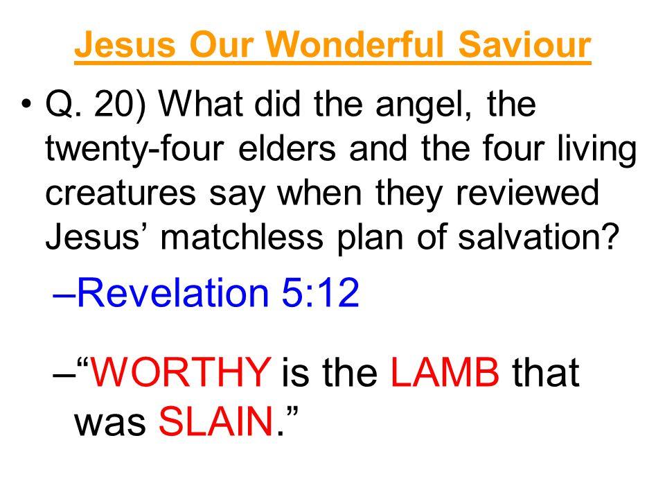 Jesus Our Wonderful Saviour Q.