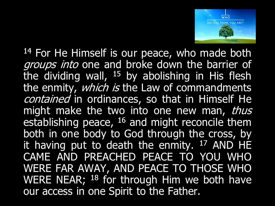 14 For He Himself is our peace, who made both groups into one and broke down the barrier of the dividing wall, 15 by abolishing in His flesh the enmity, which is the Law of commandments contained in ordinances, so that in Himself He might make the two into one new man, thus establishing peace, 16 and might reconcile them both in one body to God through the cross, by it having put to death the enmity.