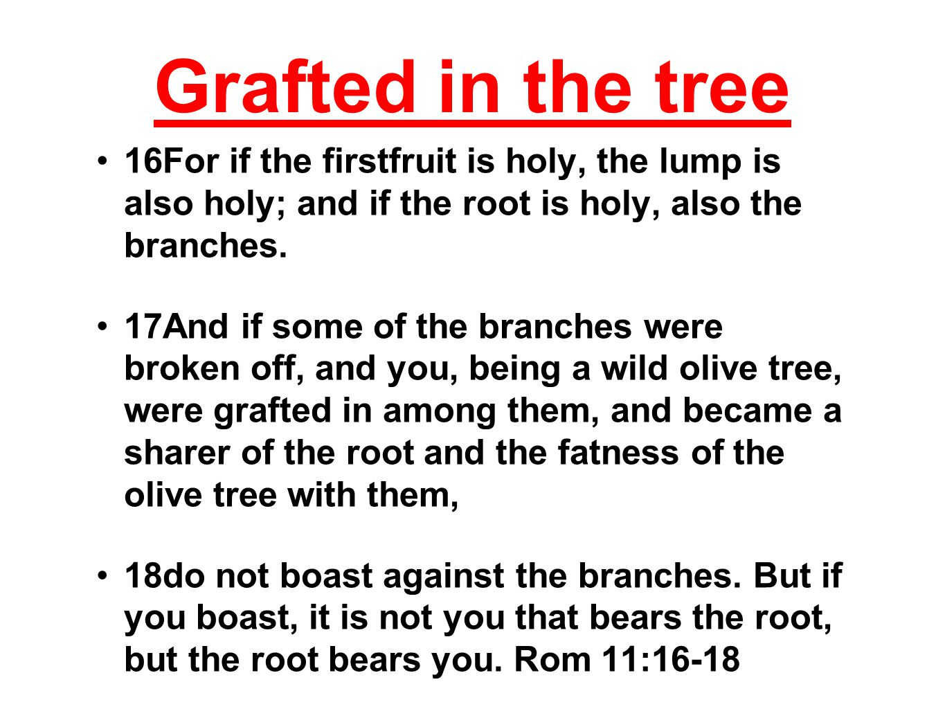 Grafted in the tree 16For if the firstfruit is holy, the lump is also holy; and if the root is holy, also the branches.