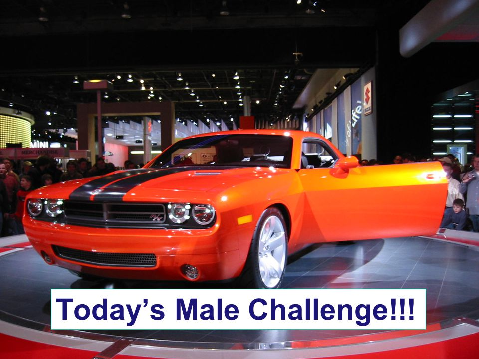 Today's Male Challenge!!!