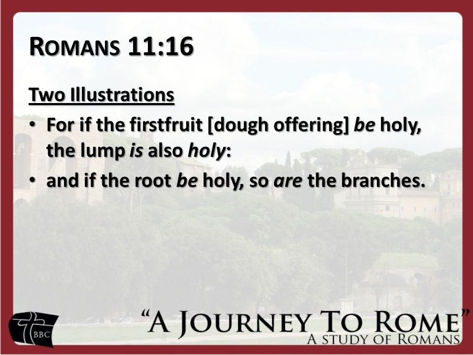 R OMANS 11:16 Two Illustrations For if the firstfruit [dough offering] be holy, the lump is also holy: For if the firstfruit [dough offering] be holy, the lump is also holy: and if the root be holy, so are the branches.