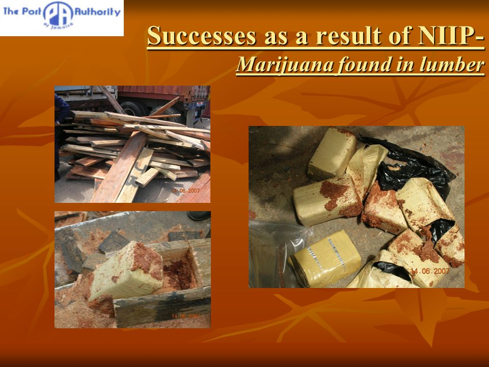 Successes as a result of NIIP- Marijuana found in lumber
