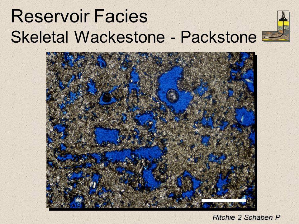 Reservoir Facies Skeletal Wackestone - Packstone Ritchie 2 Schaben P