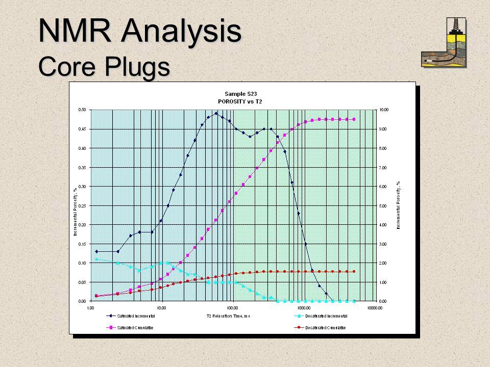 NMR Analysis Core Plugs
