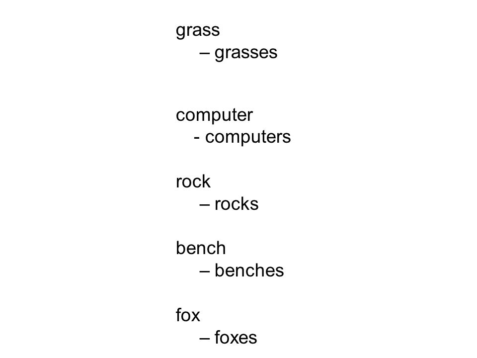 grass –grasses computer - computers rock –rocks bench –benches fox –foxes