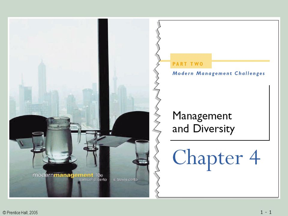 © Prentice Hall, 2005 1 - 12 Strategies for Promoting Diversity in Organizations Promoting Diversity through Organizational Commitment Ignoring Differences Complying with External Policies Enforcing External Policies Responding Inadequately Implementing Adequate Programs Taking Effective Action