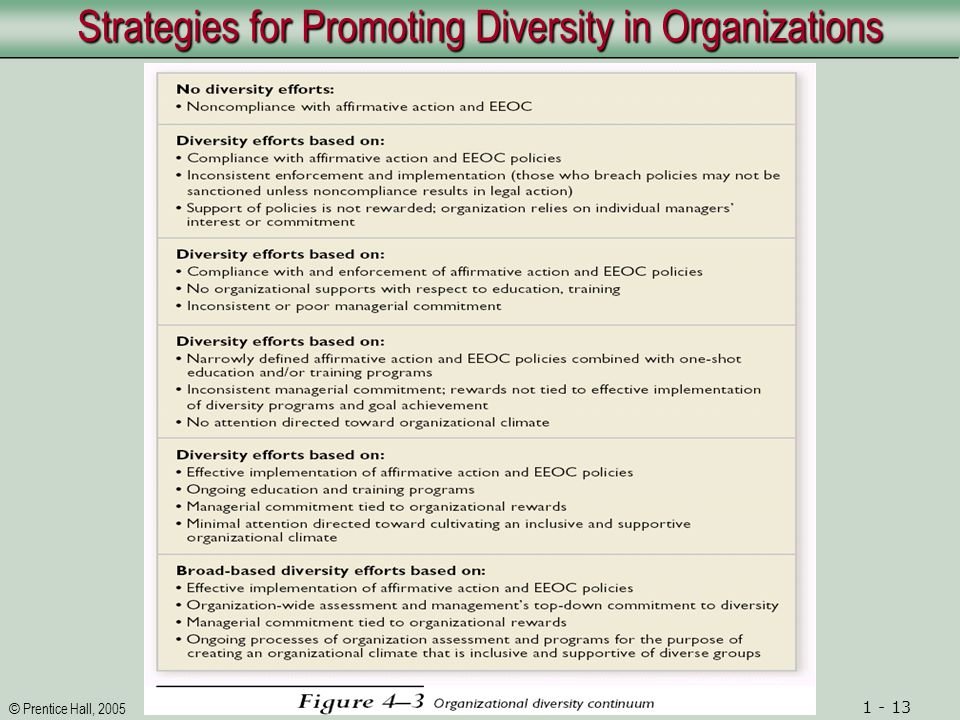 © Prentice Hall, 2005 1 - 13 Strategies for Promoting Diversity in Organizations