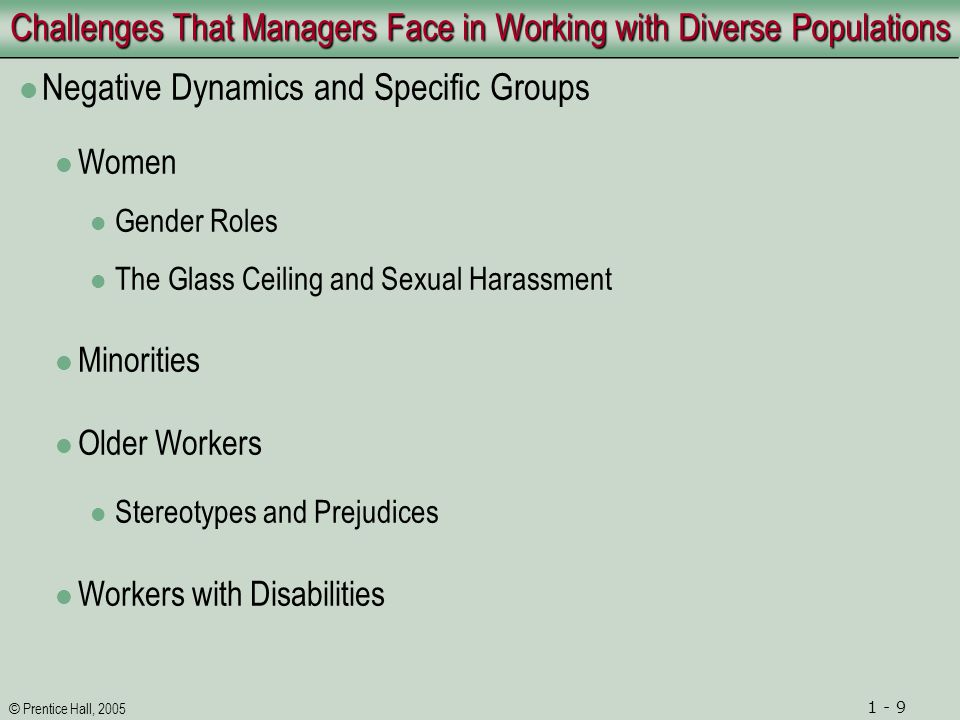 © Prentice Hall, 2005 1 - 10 Strategies for Promoting Diversity in Organizations Promoting Diversity through Hudson Institute Strategies 1.