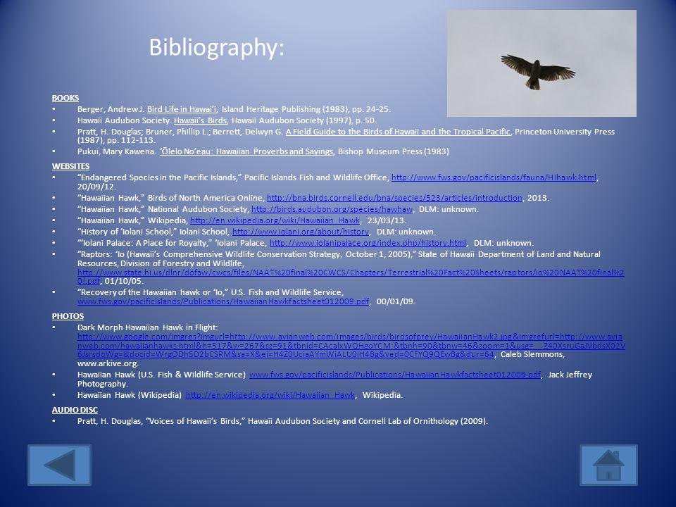 My Reflection on the ´Io The ´Io, or Hawaiian Hawk, is the only raptor in Hawai´i.