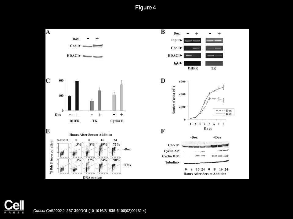 Figure 5 Cancer Cell 2002 2, 387-399DOI: (10.1016/S1535-6108(02)00182-4)