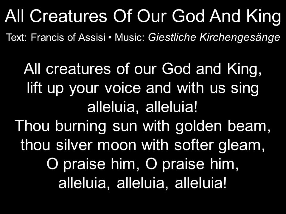 All creatures of our God and King, lift up your voice and with us sing alleluia, alleluia.