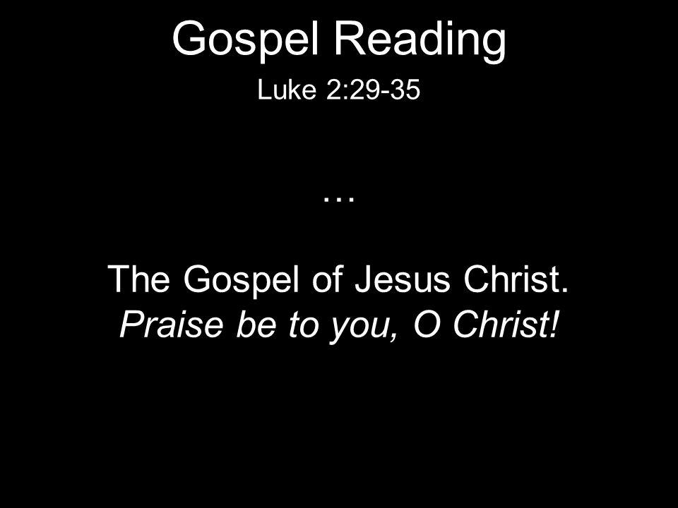 … The Gospel of Jesus Christ. Praise be to you, O Christ! Luke 2:29-35 Gospel Reading
