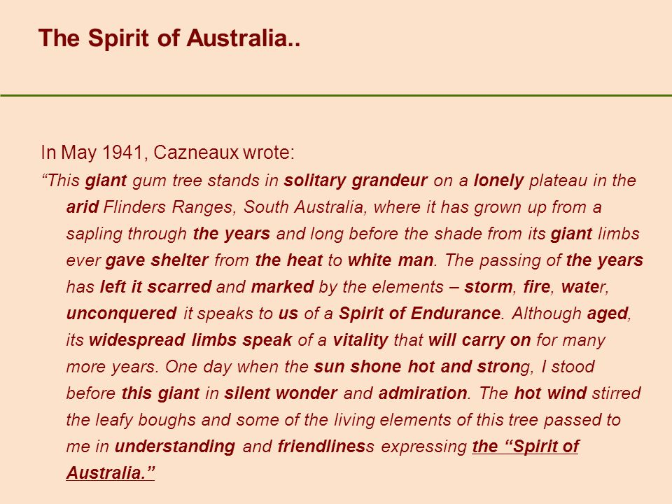 The Spirit of Australia..