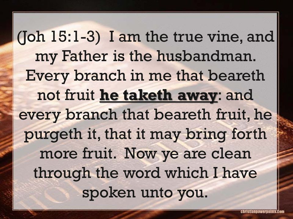 he taketh away (Joh 15:1-3) I am the true vine, and my Father is the husbandman. Every branch in me that beareth not fruit he taketh away: and every b